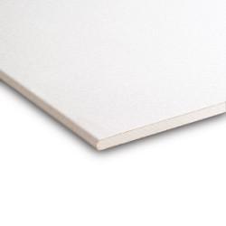 Gipsplaat Plafond 260x60x9.5 RK